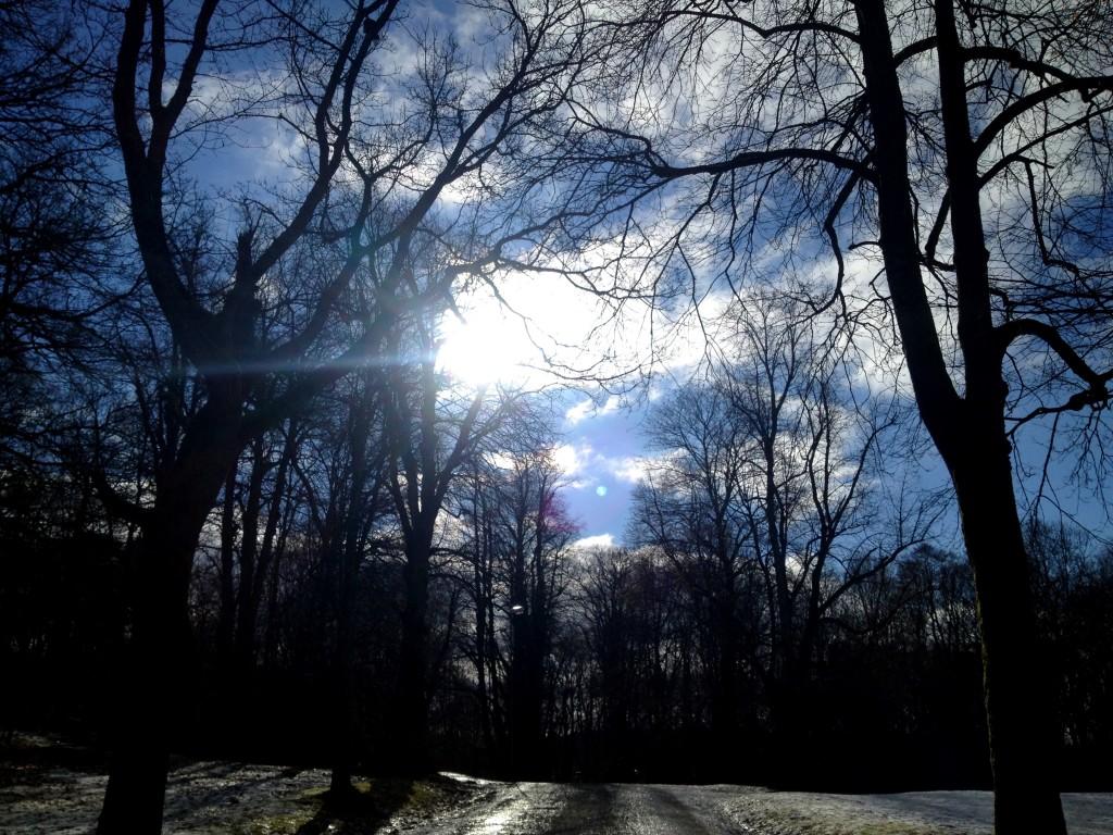 Vinterfriskt