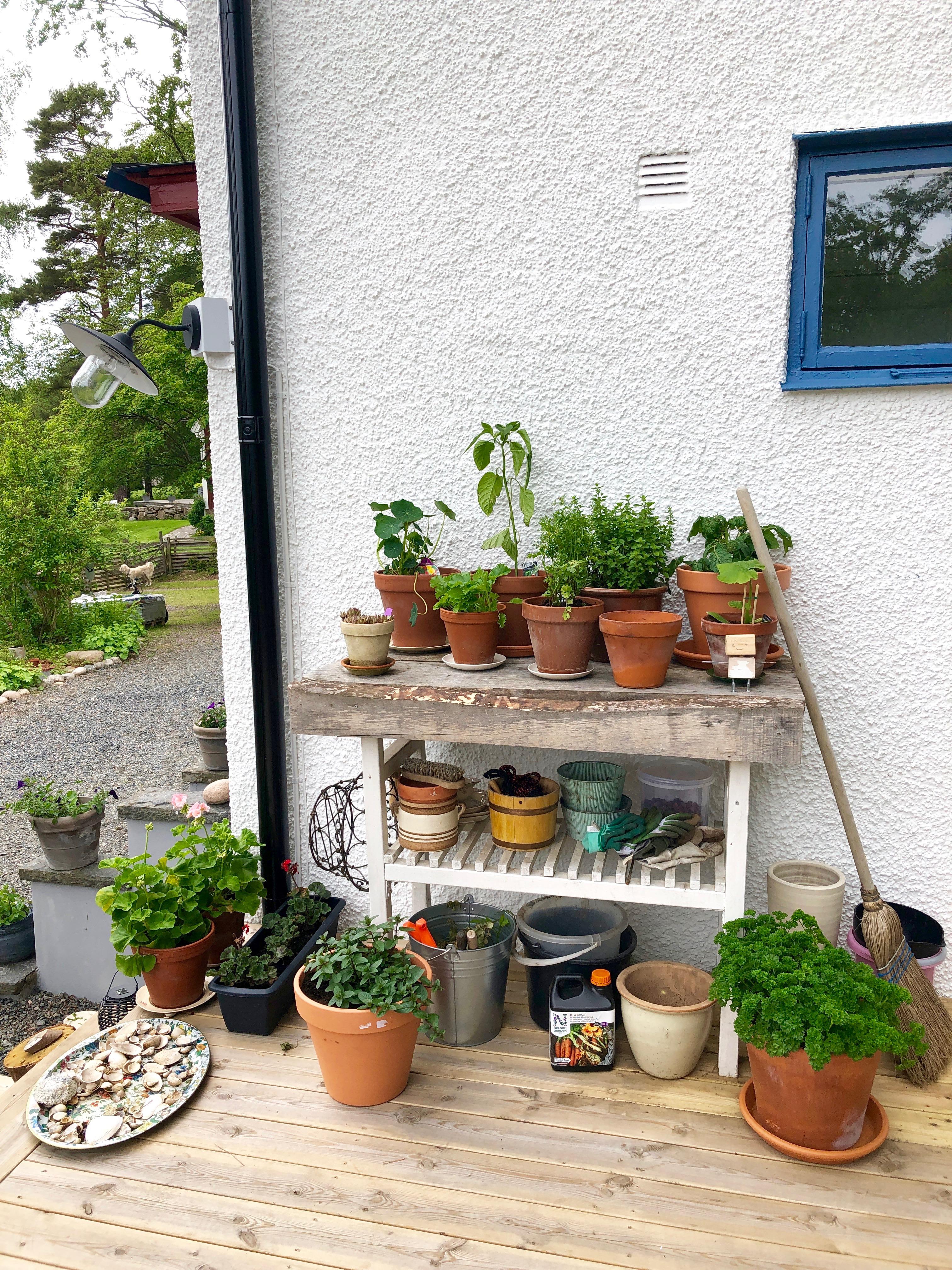 Tips på bra luft, växtnäring & helfab